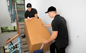 Professional Movers Woodbridge VA